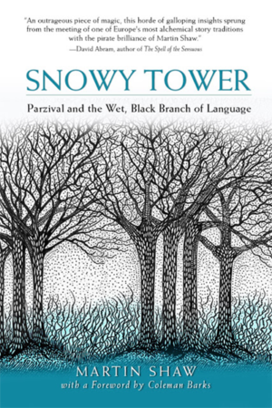 : Parzival and the Wet Black Branch of Language, Martin Shaw